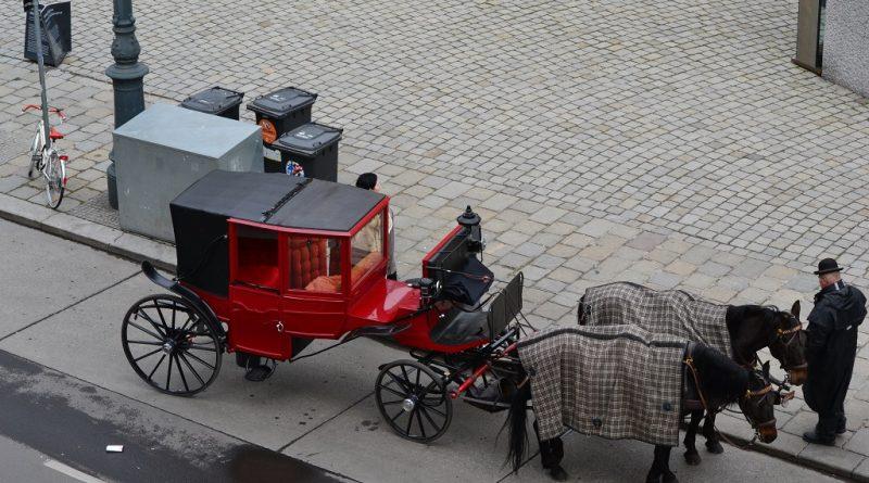 Wien fördert Startups