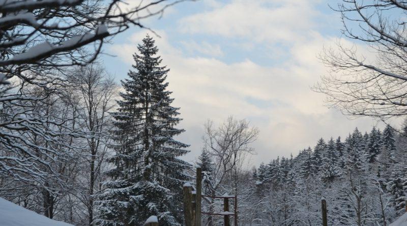 Risiko Weihnachtsmarkt und Winterzeit