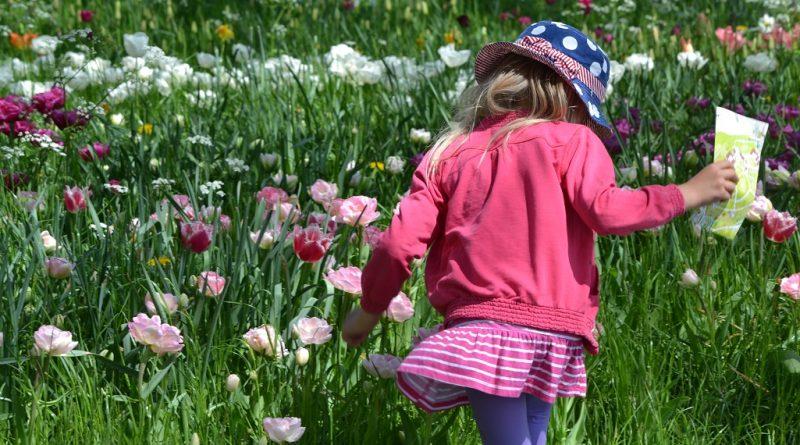 Blumen und Wachstum